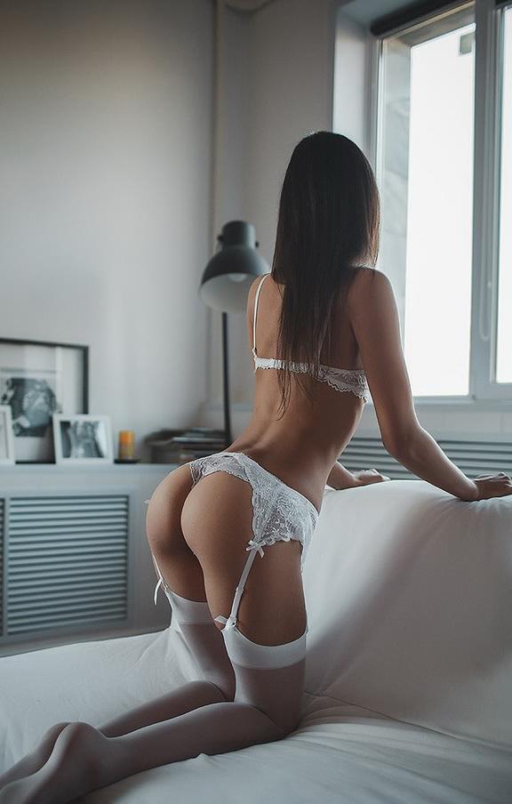 radiator_curious_white