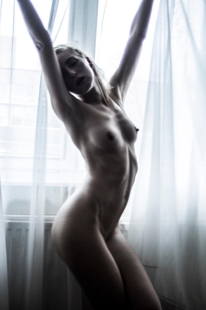 radiator_whitecurt